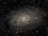 Triangulum Galaxy - M33